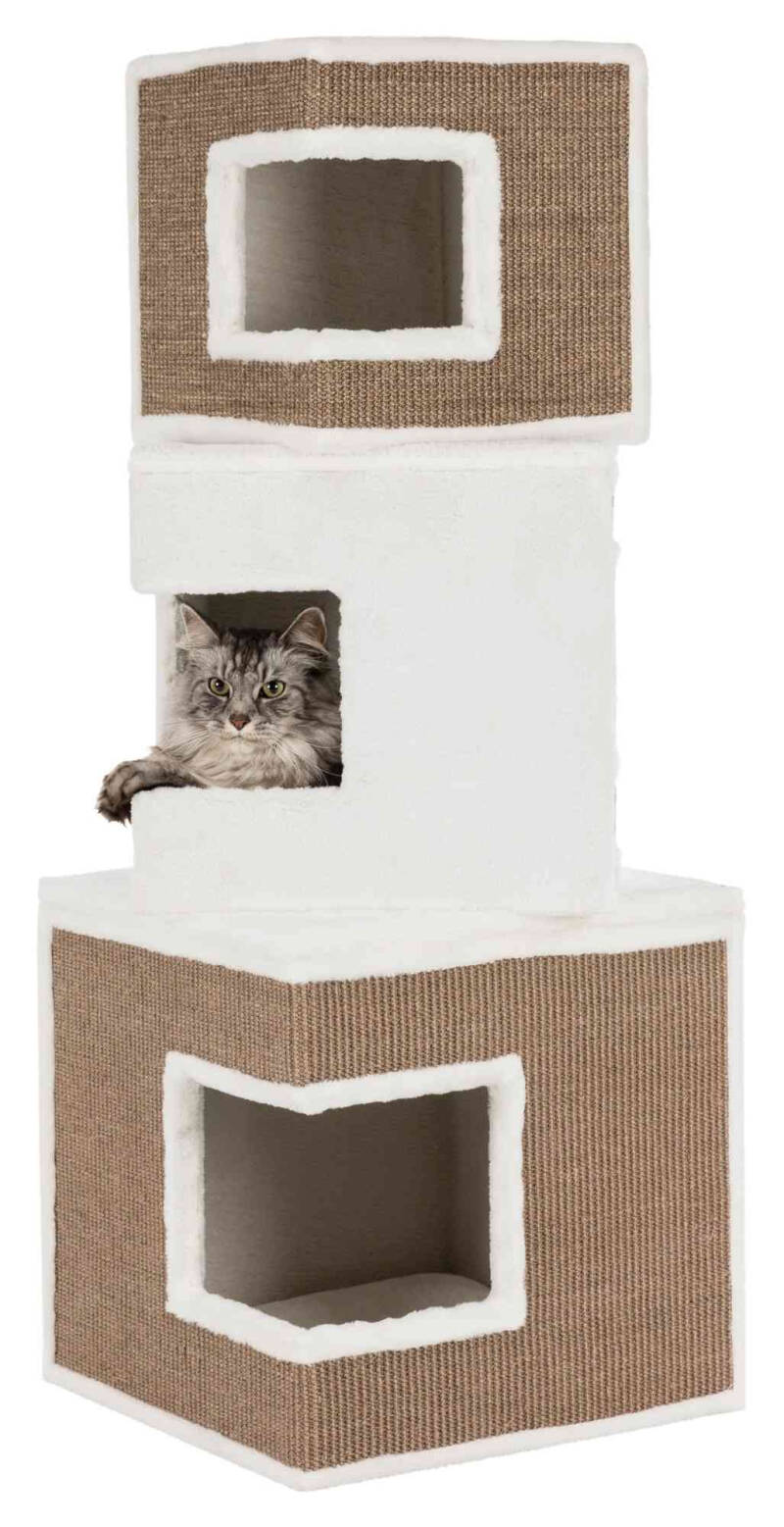 Cat Tower Lilo