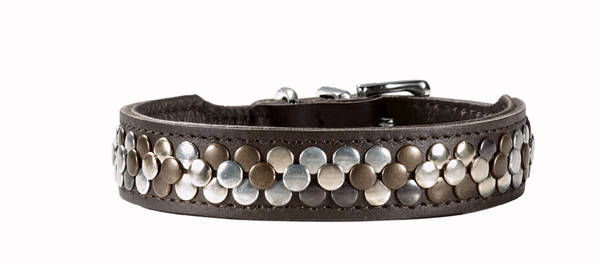 Hunter Collar Arizona bruin Hondenhalsband