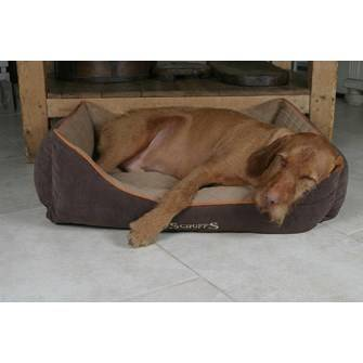 Thermal Bed Bruin