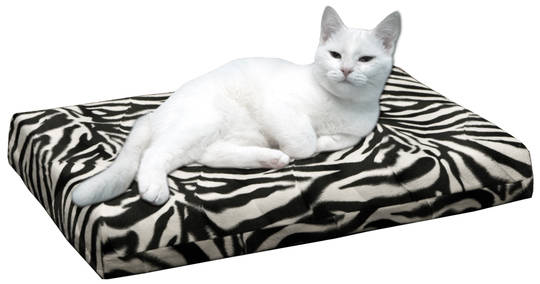 HD Orthopedische kattenbed zebra