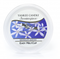 Yankee Candle - Midnight Jasmine - Scenterpiece Meltcup