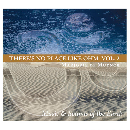 CD There's No PLace Like Ohm Vol. 2