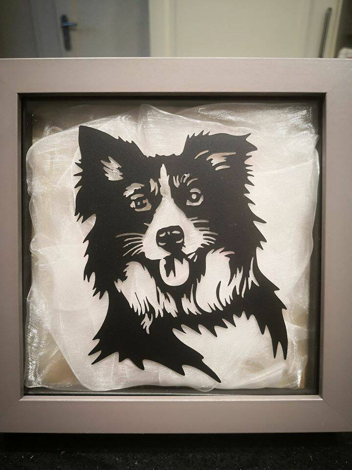 Wandversiering Border Collie