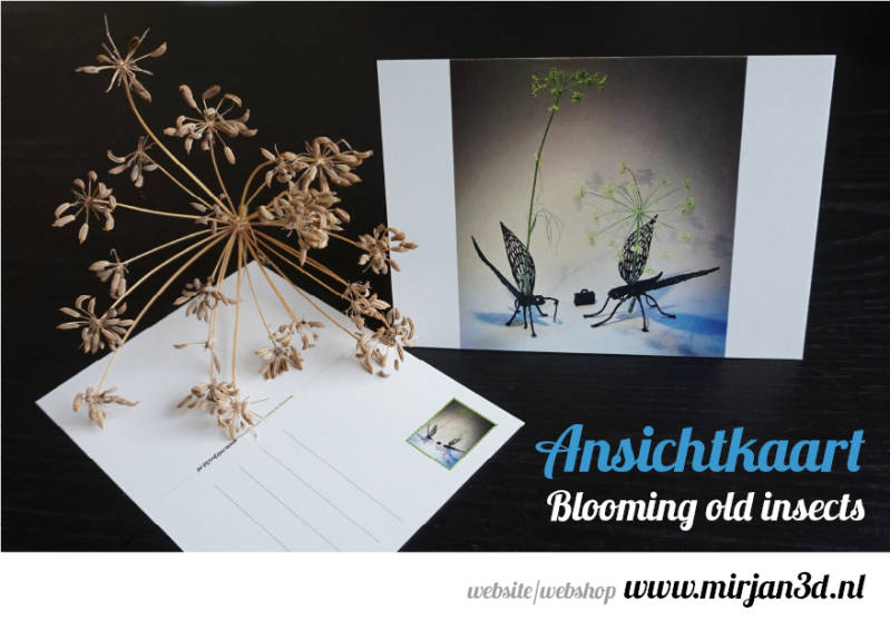 Ansichtkaart 'Blooming old insects'.