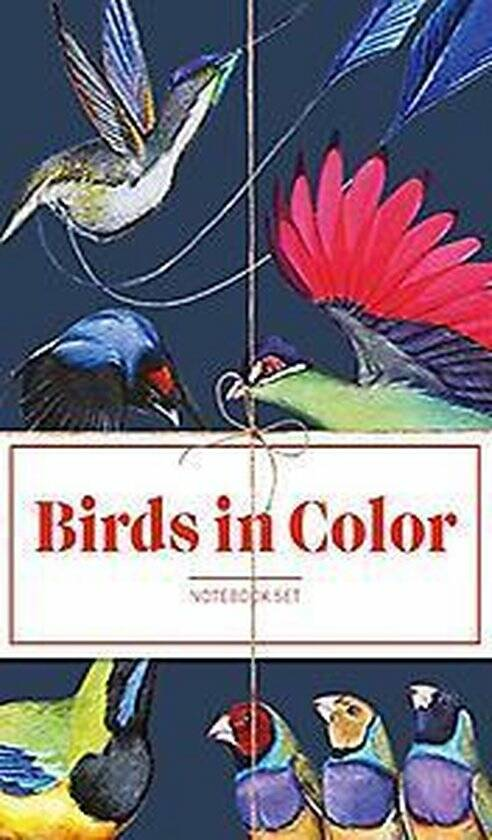 Birds in Color Notebooks Notebook Collection (3 stuks)