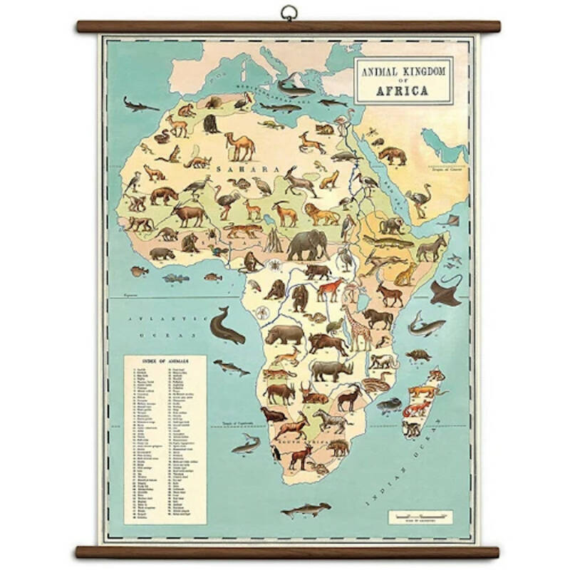 Cavallini Vintage School Chart- ANIMAL KINGDOM