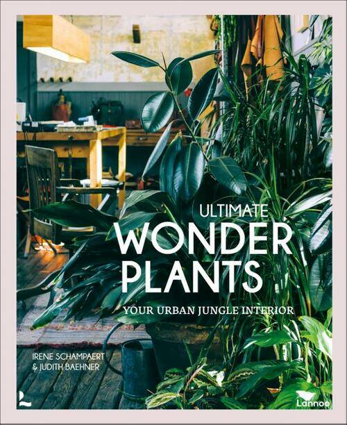 The ultimate wonderplants Your urban jungle interior