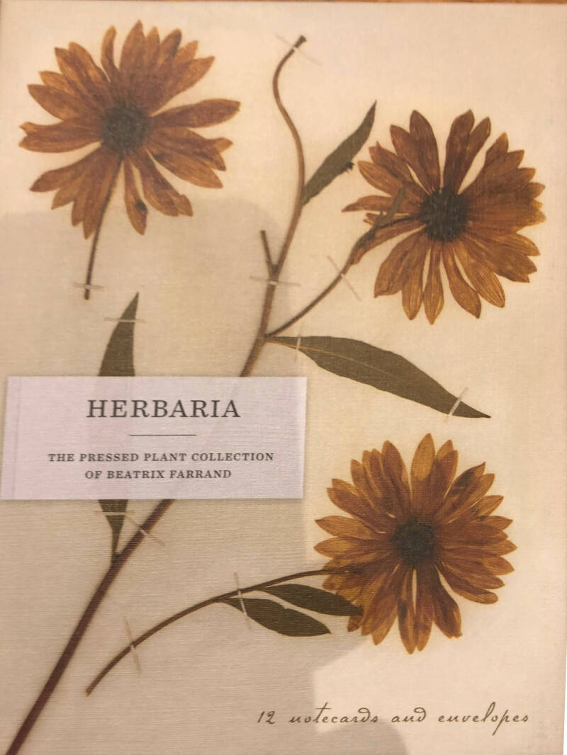 Herbara  The present plant collection of Beatrix Farrand
