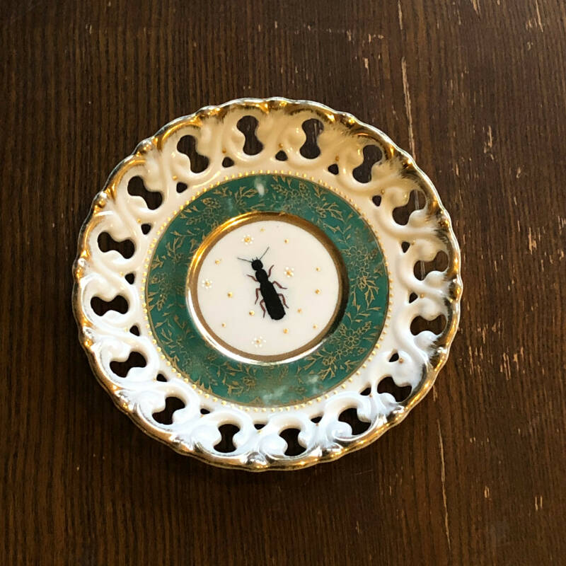 Kunst-bord - Insect