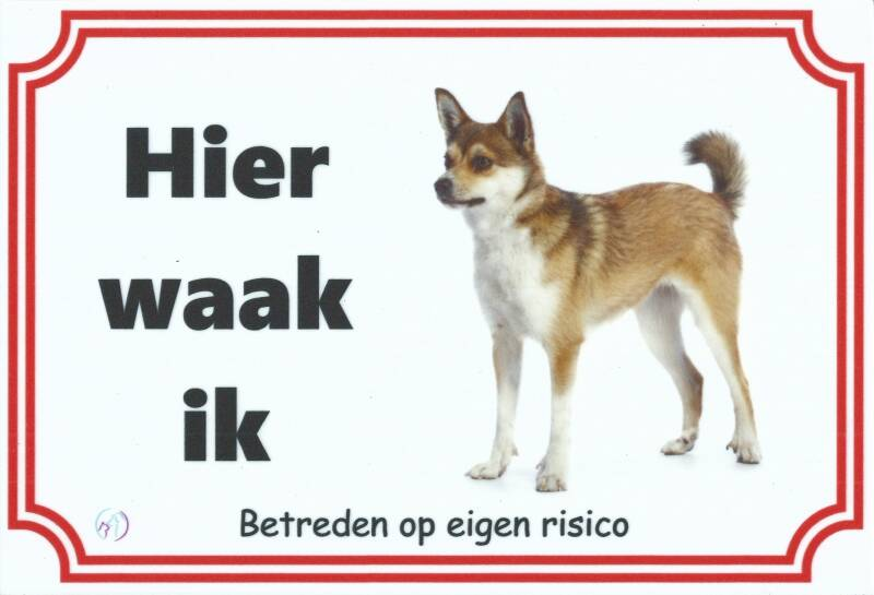 Noorse Lundehond