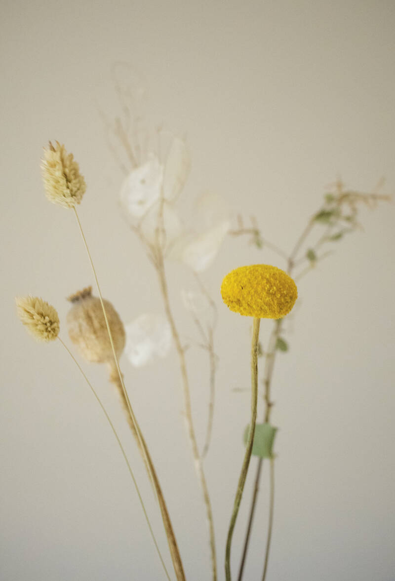 Dried flowers bunch