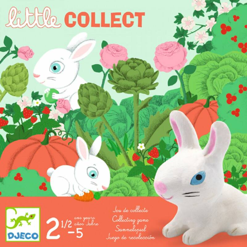 Little Collect DJ08558 (Djeco) 2+
