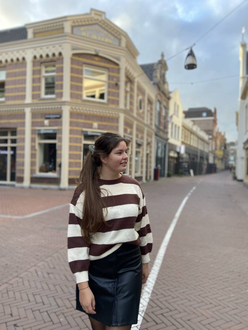 Striped Brown and creme sweater