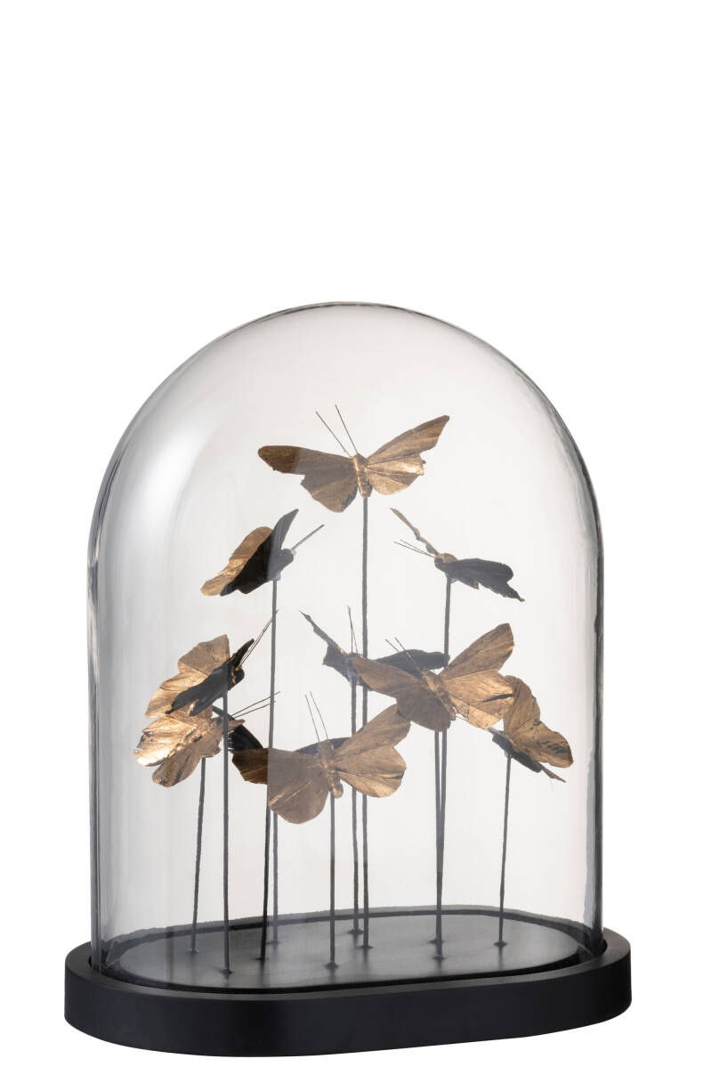ROUND BELL JAR BUTTERFLY L