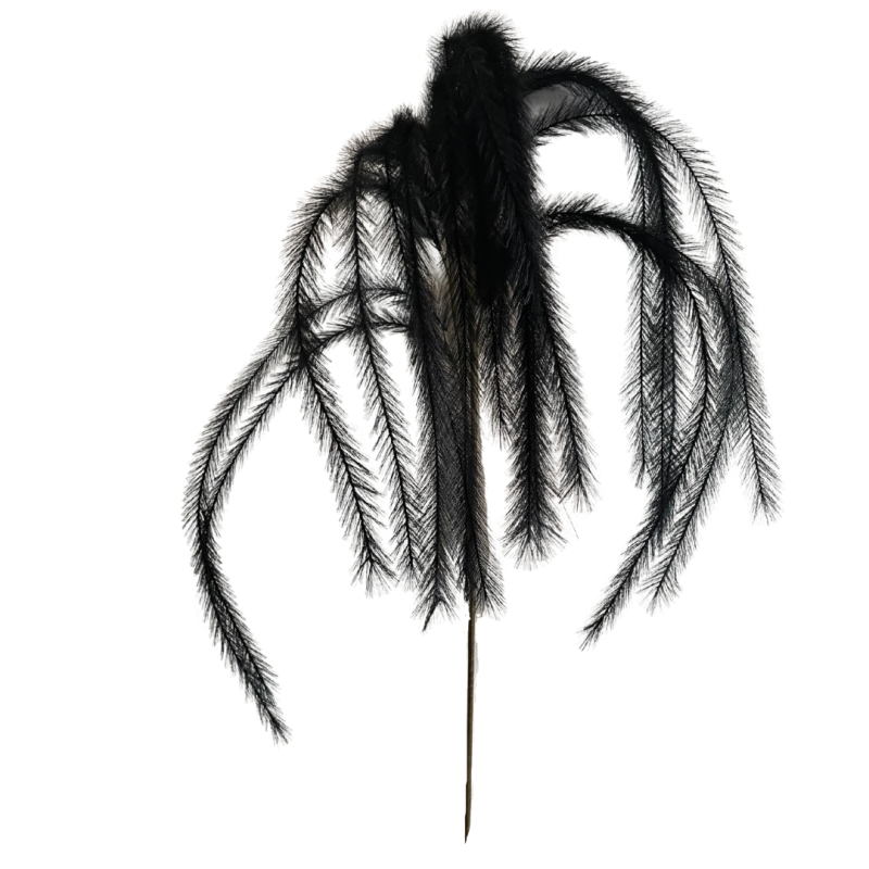 THE BLACK PLUMES