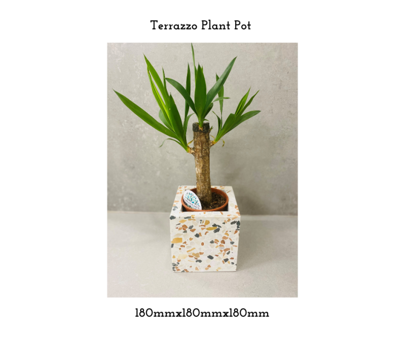 The Goswell - Plant Pot 180x180x180mm