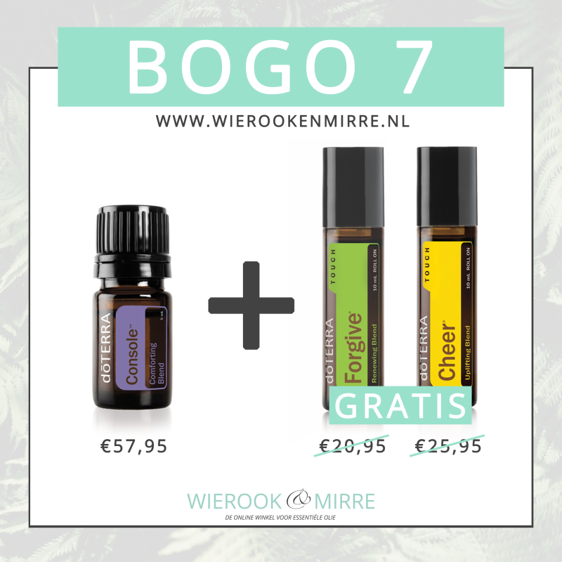 BOGO 7: Console + Forgive Touch & Cheer Touch