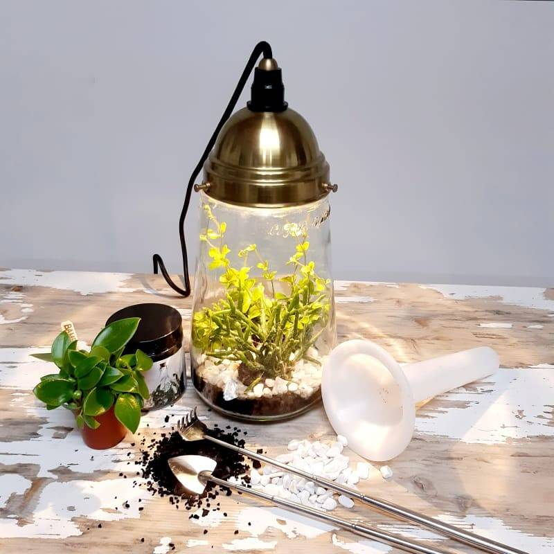 APRIL: Kesbeke terrarium lamp: super hip ecosysteem !