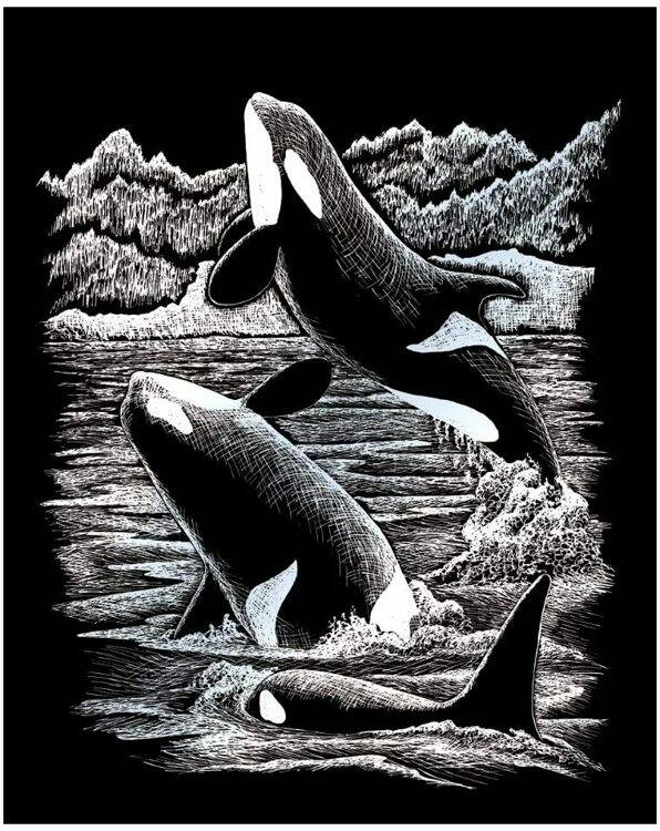 SILF19 -ORCA WHALES ZILVER