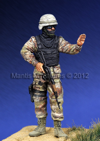 New Iraqi Army	MAN35045