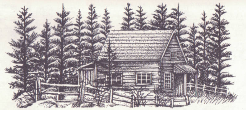 144F Cabin with fence