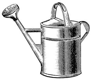 SW D07063/64 Watering can