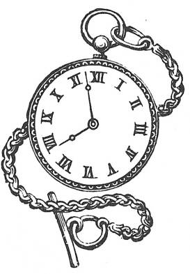 SW E20042/229 Watch on chain
