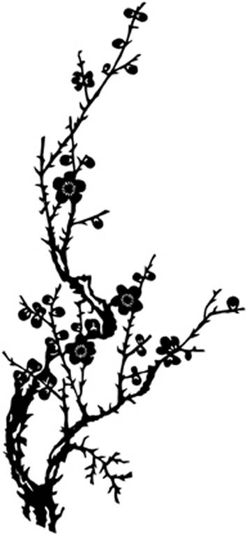 SW N05161/12 Blossombranch silhouette