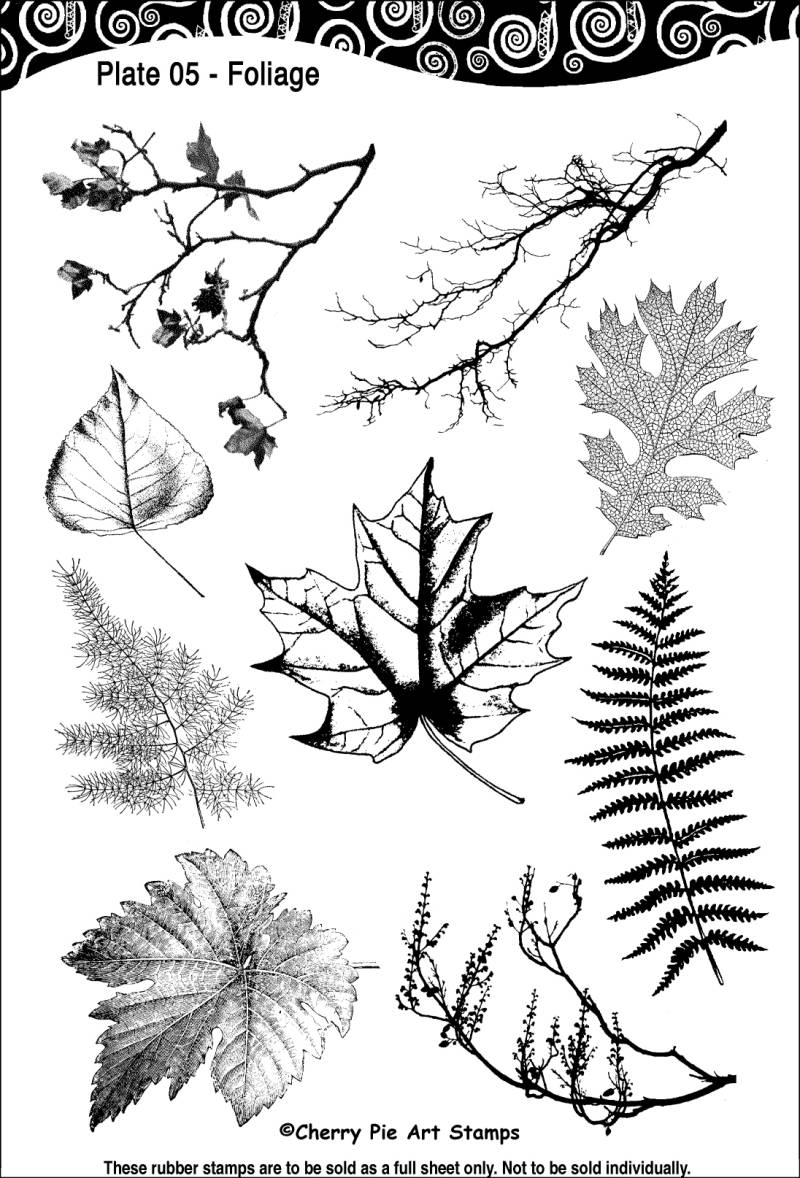 CPPL05 Plate 05 Foliage
