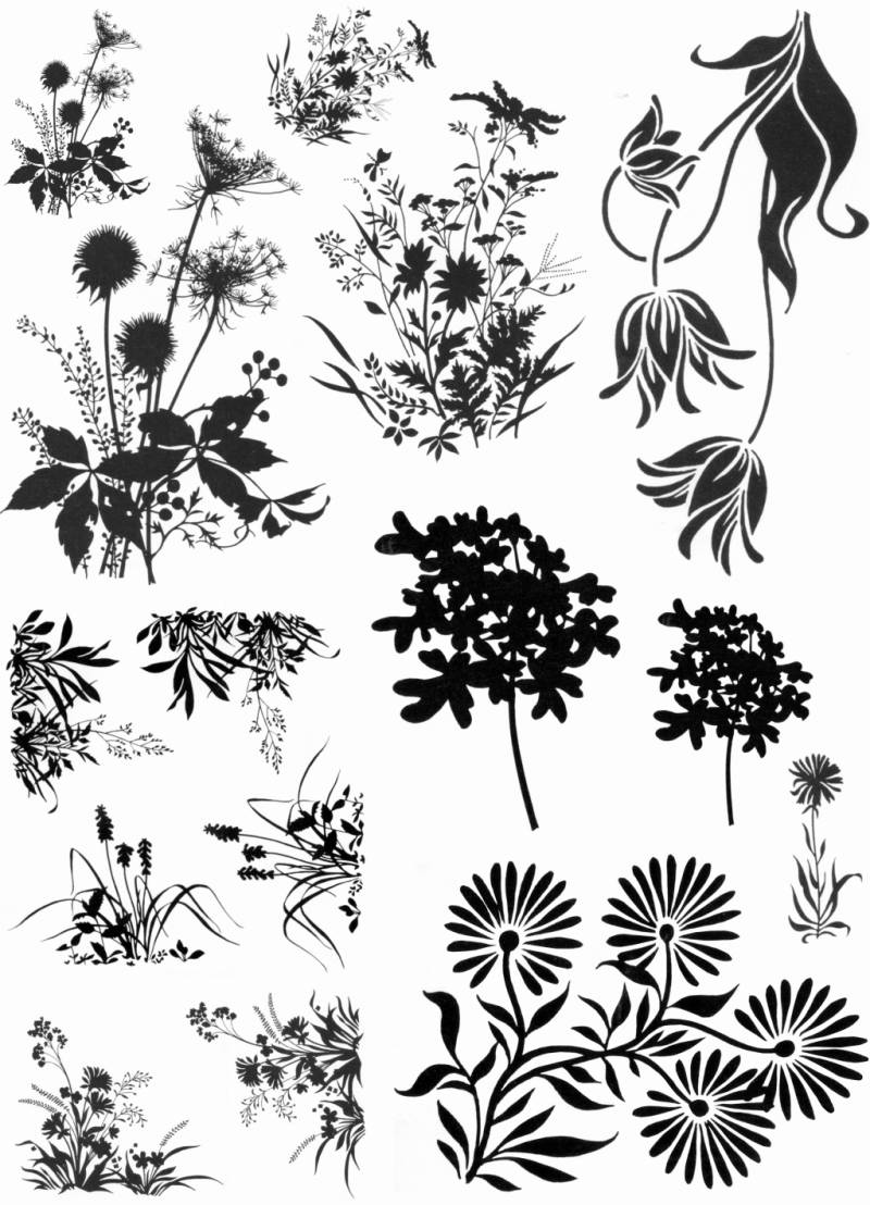 NSPL105 Plate 105 Flower silhouettes 1