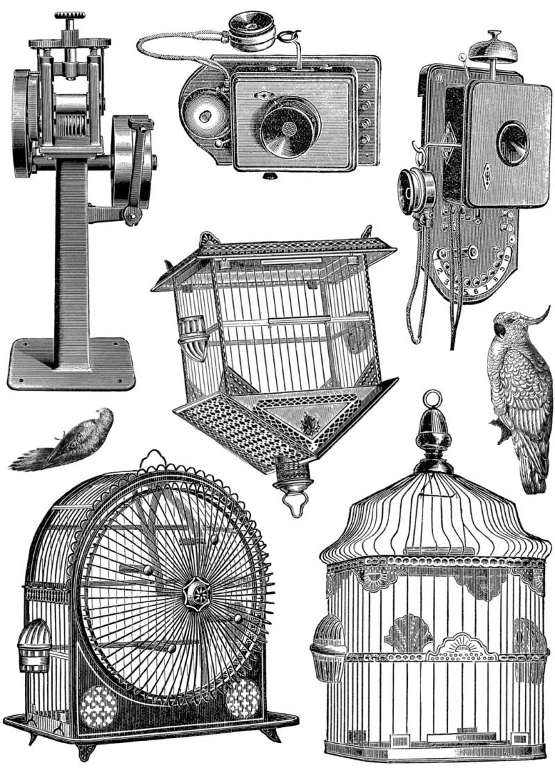 PLATESW142 Plate 142 Steampunk 15 Bird cages and telephones