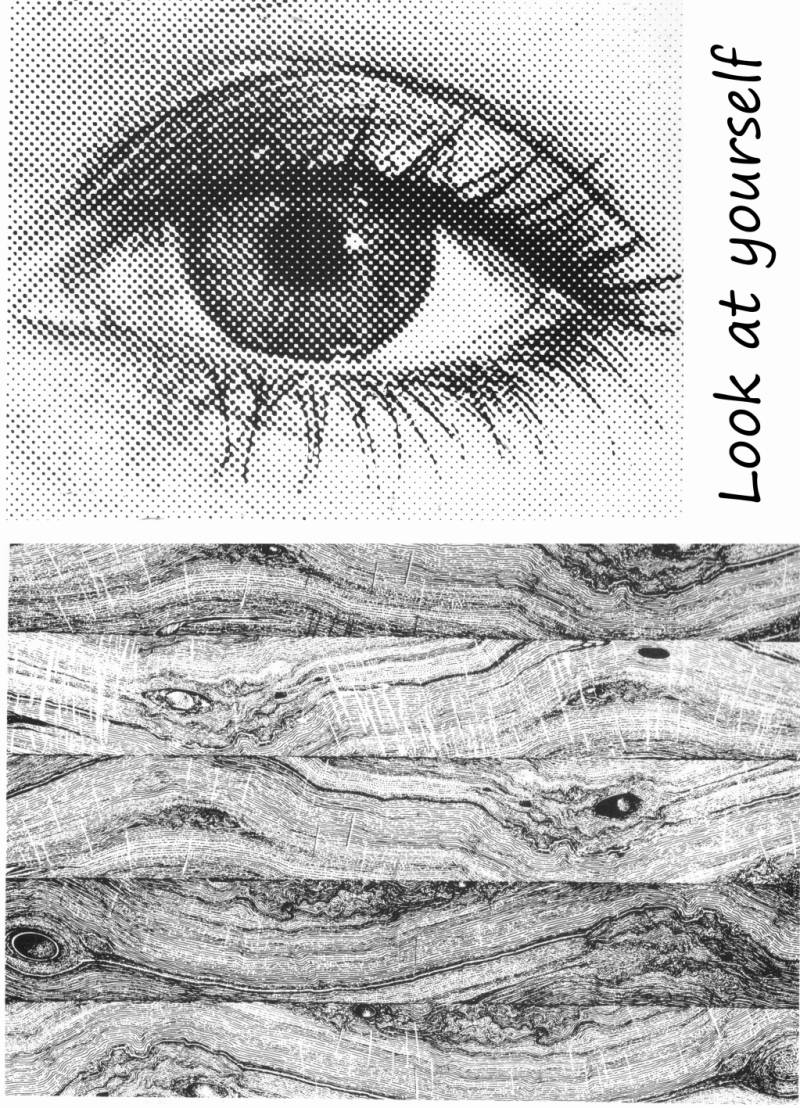 PLATESW171 Plate 171 Backgroundstamps 4