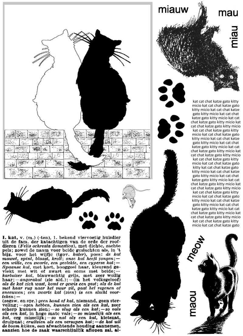 PLATESW223 Plate 223 Cats 1