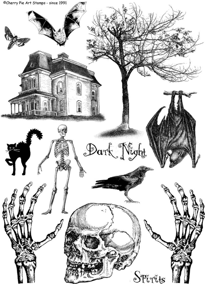 CPPL42 Plate 42 Dark night