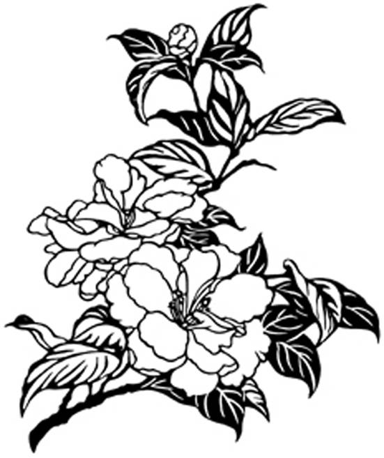 SW Q05156/11 Chinese rose