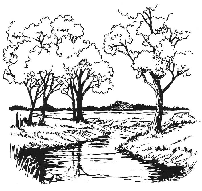 SW R14029/175 Ditch with trees