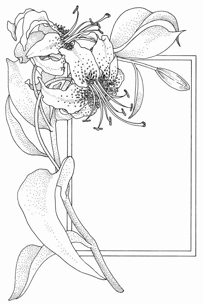 SW S09005/85 Lilly with frame