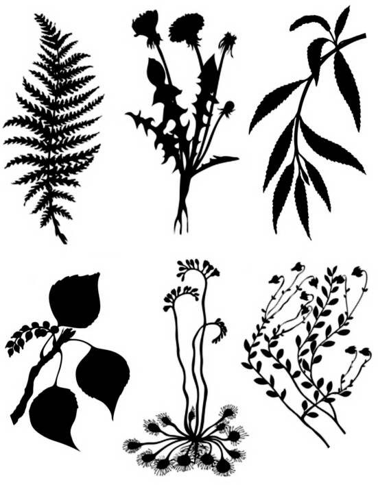 SW S17055/201 Six flower- and leafsilhouettes