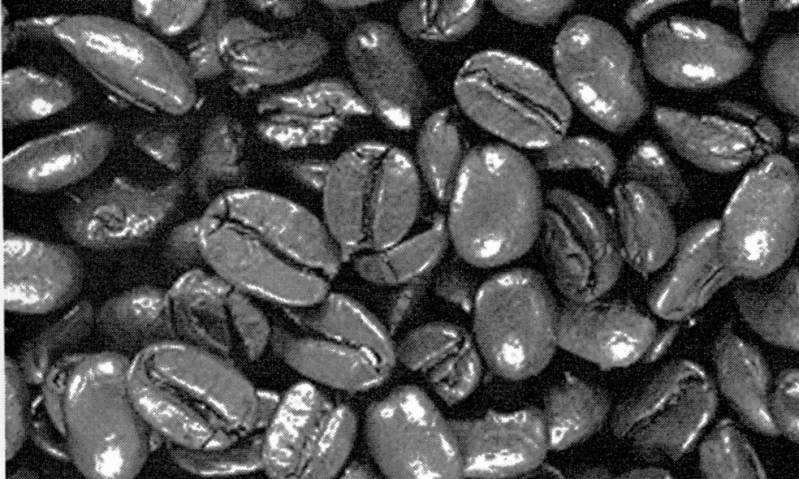 SW T09002/82 Background coffeebeans