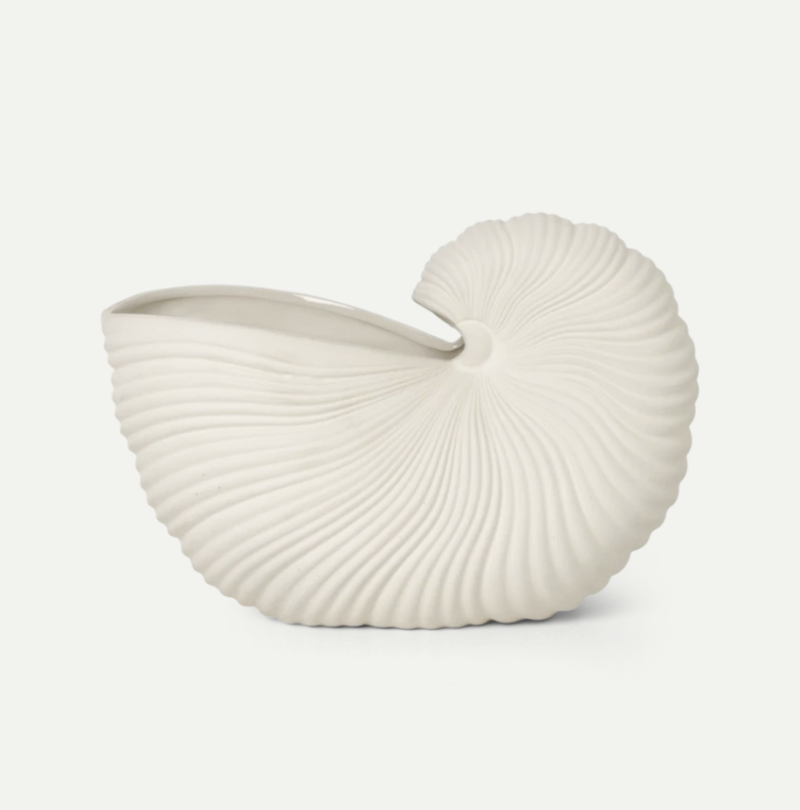 Shell Pot - Ceramic
