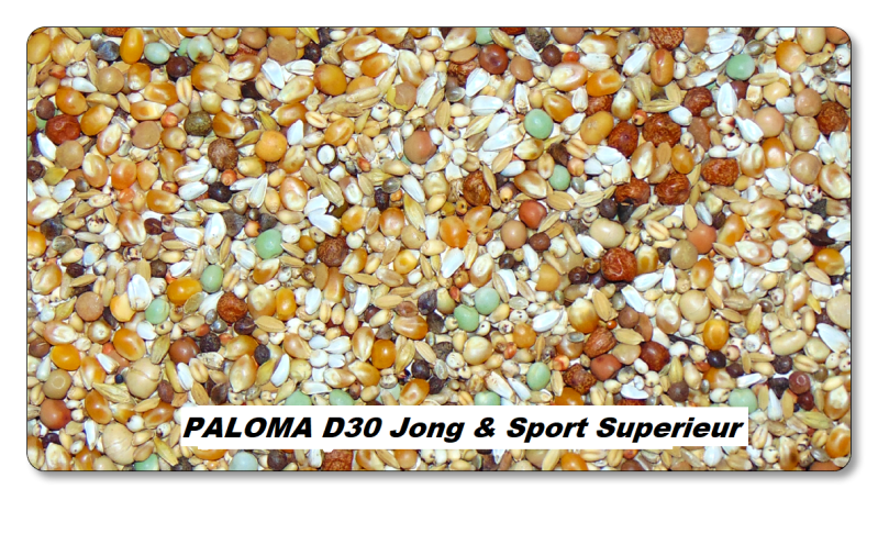 D30 Paloma   Superieur Sport & Junior