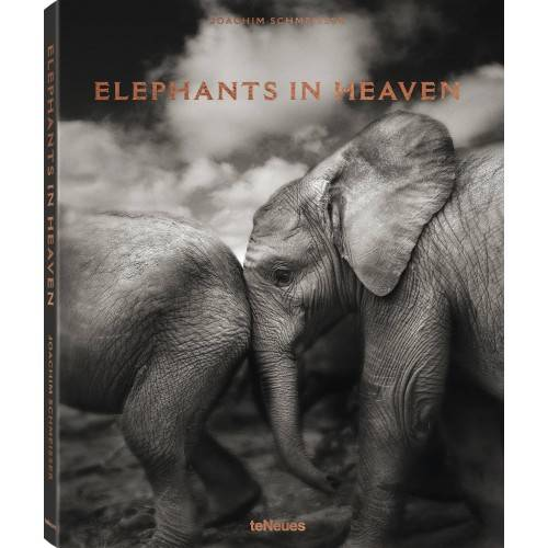 Elephants in Heaven, Joachim Schmeisser