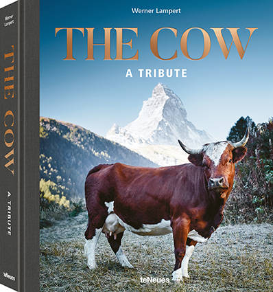 Werner Lampert, The cow, a tribute