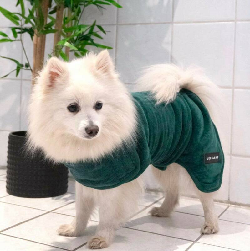 Luxury Dog Bathrobe  | Teal