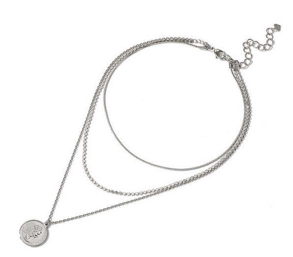 Layered necklace munt | zilver