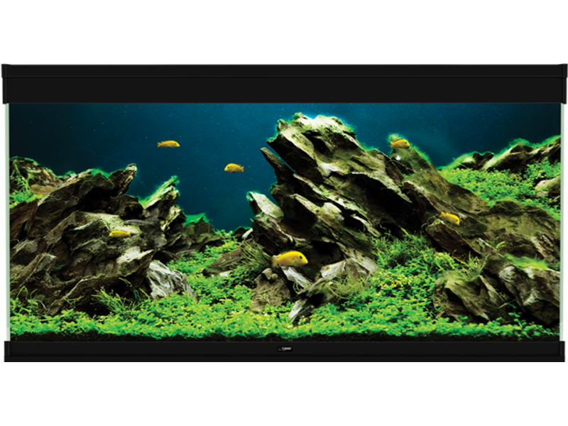 Ciano Emotions Nature Pro 120 Zwart Aquarium
