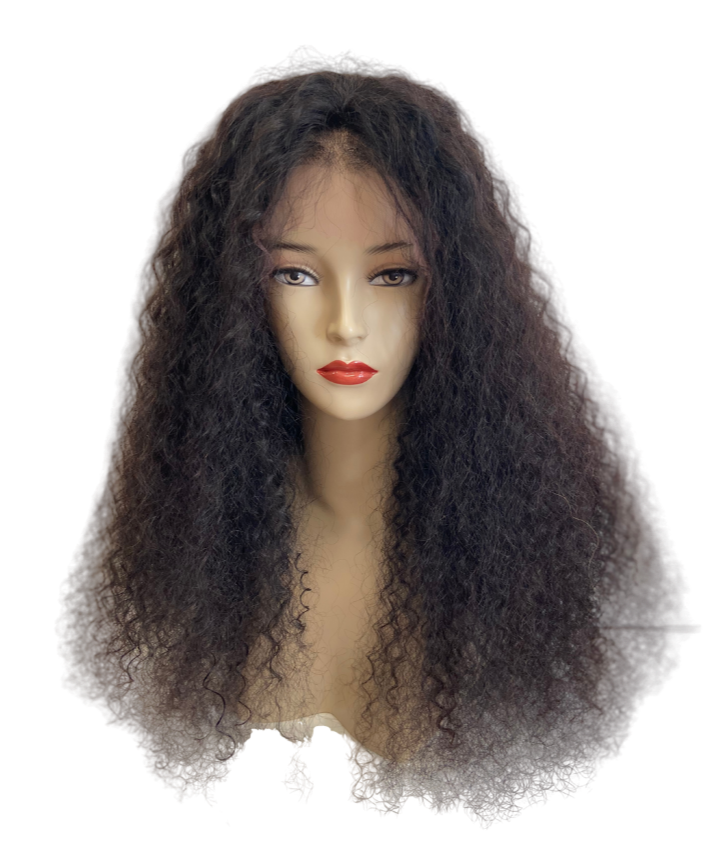 Brazilian 100% Human Virgin Hair Wig Deep Curly Front Lace 24 inch (250g)