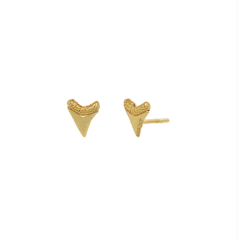 Baby shark tooth studs