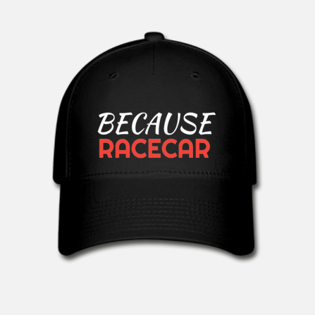 Pet 'Because Racecar' red