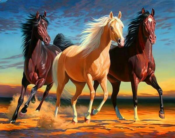 R-D7.1 GX539 Diamond Painting Set Horses 40x30cm
